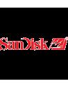 SanDdisk